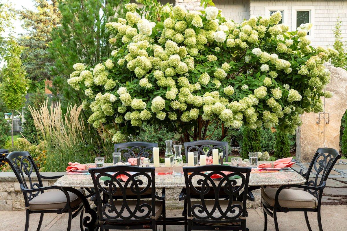 patio table in Beach House Beauty backyard landscape by Tim Johnson at LIVIT